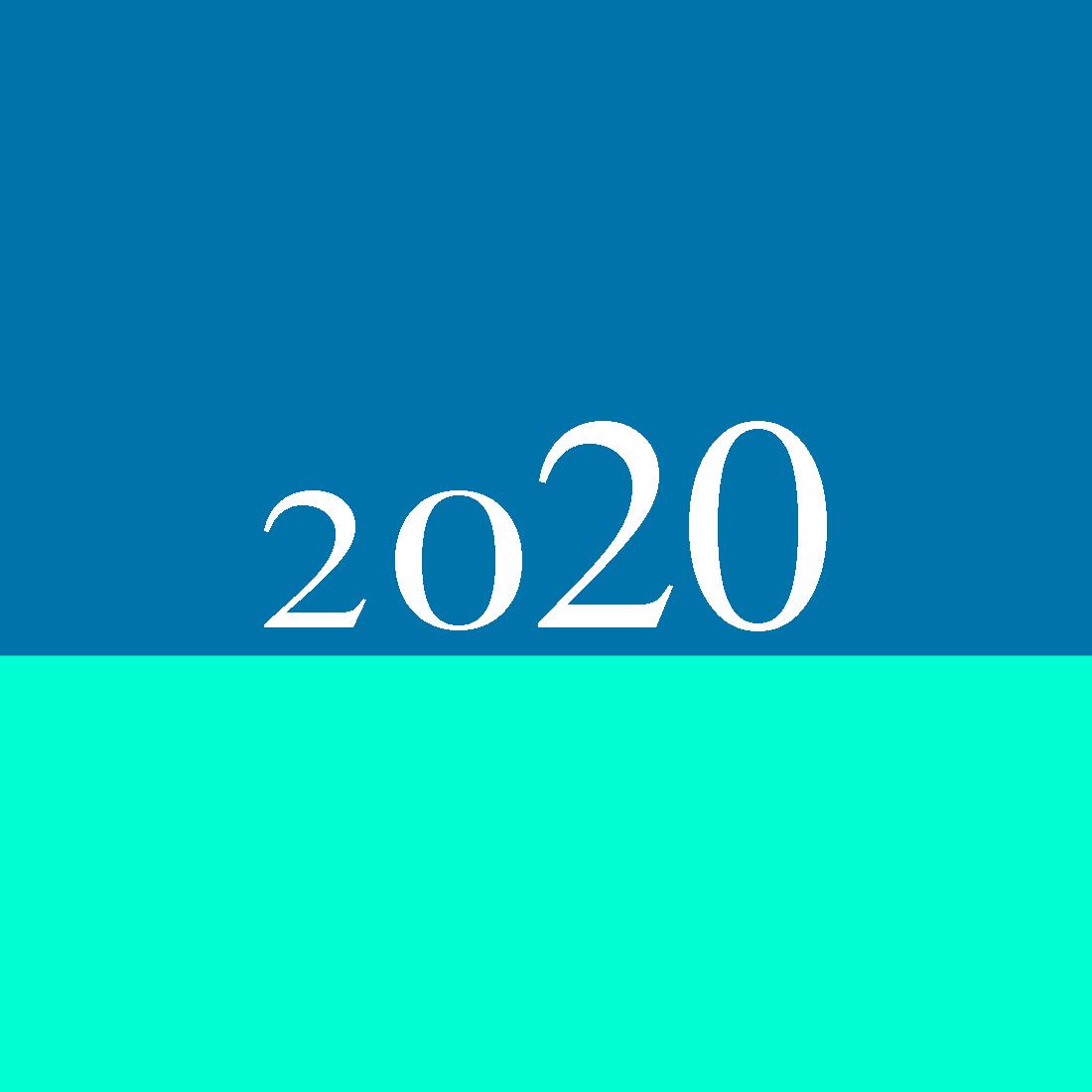 2020 completo